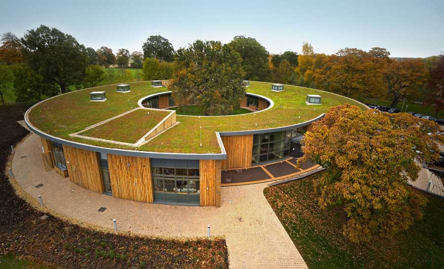 4 Reasons Green Roofs Do A Building Good